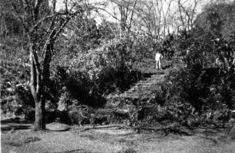 1935_03